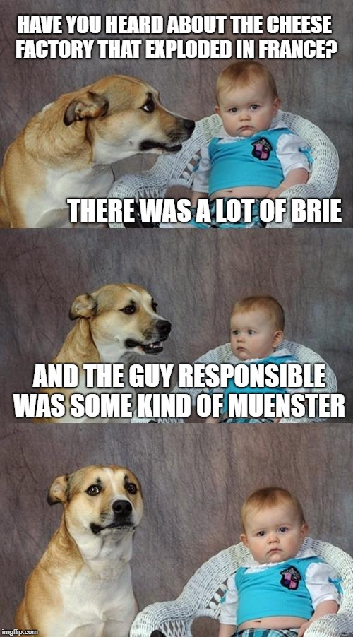 Dad Joke Dog Meme | HAVE YOU HEARD ABOUT THE CHEESE FACTORY THAT EXPLODED IN FRANCE? THERE WAS A LOT OF BRIE AND THE GUY RESPONSIBLE WAS SOME KIND OF MUENSTER | image tagged in memes,dad joke dog | made w/ Imgflip meme maker