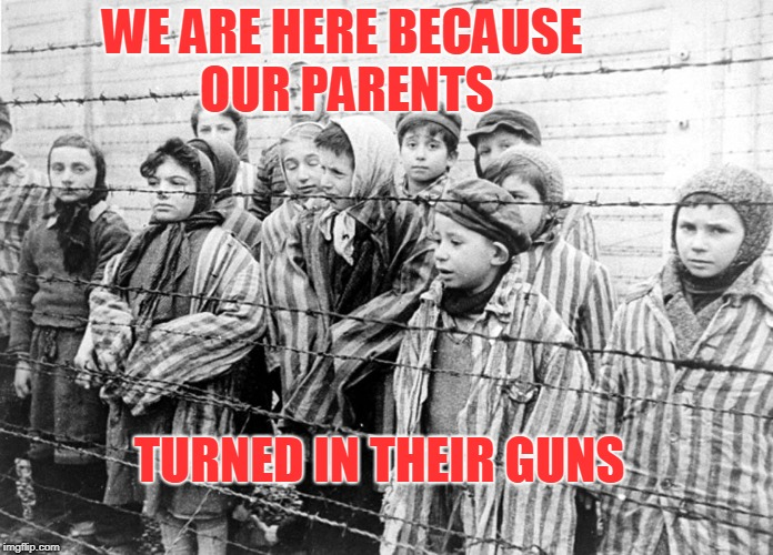 gun control | WE ARE HERE BECAUSE OUR PARENTS TURNED IN THEIR GUNS | image tagged in gun control | made w/ Imgflip meme maker