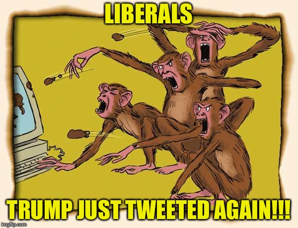 LIBERALS TRUMP JUST TWEETED AGAIN!!! | image tagged in angry  stupid | made w/ Imgflip meme maker