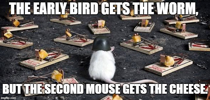 THE EARLY BIRD GETS THE WORM, BUT THE SECOND MOUSE GETS THE CHEESE. | image tagged in mine minefield trap cheese mouse | made w/ Imgflip meme maker