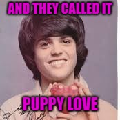 AND THEY CALLED IT PUPPY LOVE | made w/ Imgflip meme maker