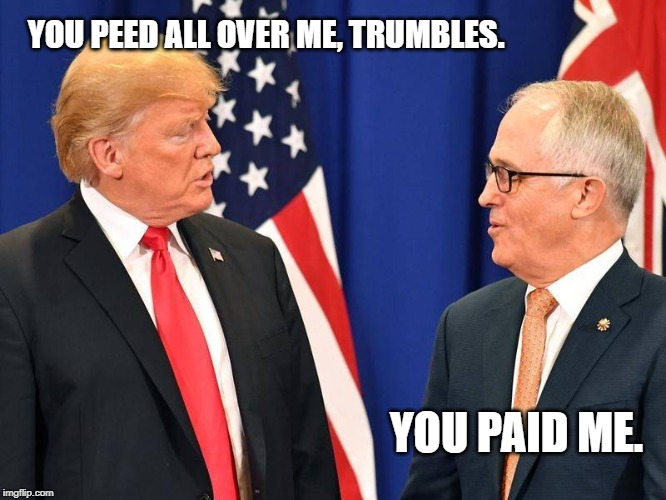 YOU PEED ALL OVER ME, TRUMBLES. YOU PAID ME. | image tagged in 2 arseholes | made w/ Imgflip meme maker