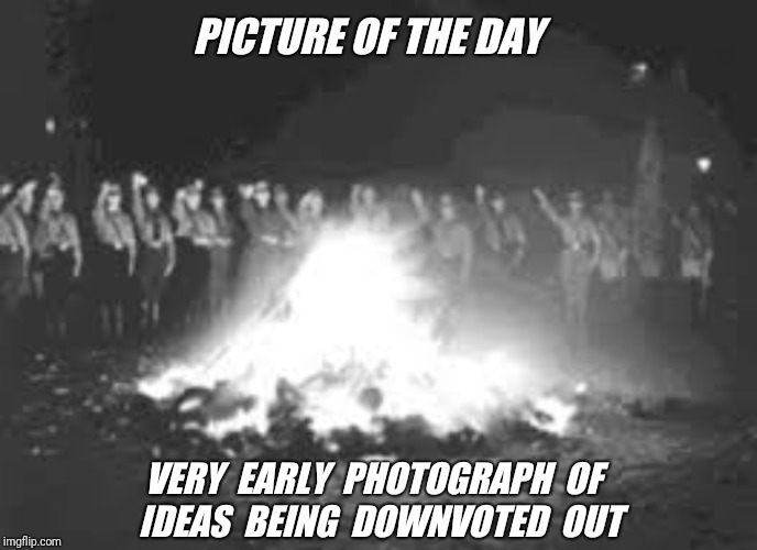 When a front page meme is unfeatured. (It must have struck a chord) | PICTURE OF THE DAY VERY  EARLY  PHOTOGRAPH  OF  IDEAS  BEING  DOWNVOTED  OUT | image tagged in historical meme,downvote,unfeatured,censorship | made w/ Imgflip meme maker