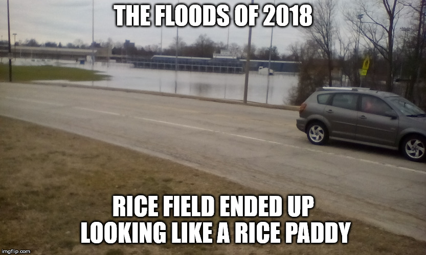 After being evacuated because of the flood waters, I took this picture across the street from my daughter's  | THE FLOODS OF 2018 RICE FIELD ENDED UP LOOKING LIKE A RICE PADDY | image tagged in rice field,rice paddy,2018 floods,local school,true story | made w/ Imgflip meme maker