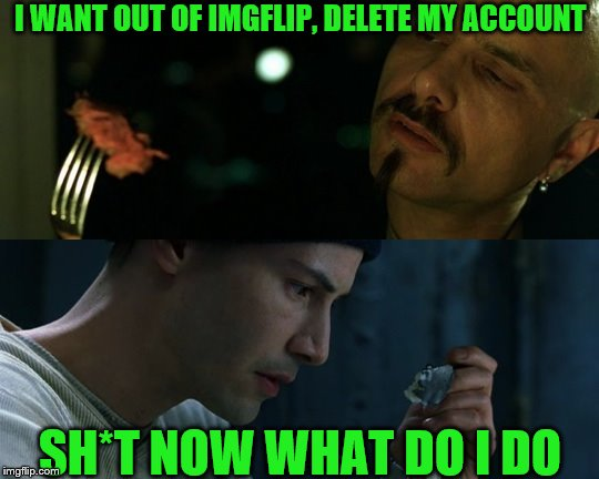 Delete my IMGFLIP account, my subs, comments, I don't want to remember nothing | I WANT OUT OF IMGFLIP, DELETE MY ACCOUNT SH*T NOW WHAT DO I DO | image tagged in matrix,imgflip users,meanwhile on imgflip,neo,imgflip | made w/ Imgflip meme maker
