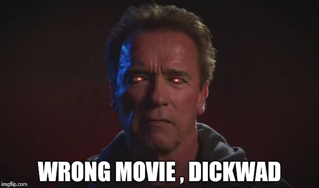 WRONG MOVIE , DICKWAD | image tagged in terminator fire eyes | made w/ Imgflip meme maker