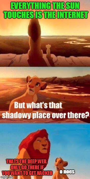 Simba Shadowy Place Meme | EVERYTHING THE SUN TOUCHES IS THE INTERNET THATS THE DEEP WEB, ONLY GO THERE IF YOU WANT TO GET HACKED o noes | image tagged in memes,simba shadowy place | made w/ Imgflip meme maker