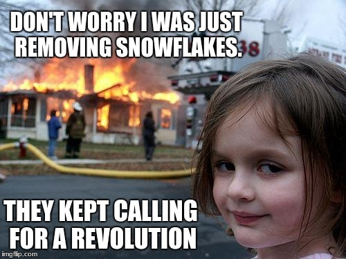 Disaster Girl Meme | DON'T WORRY I WAS JUST REMOVING SNOWFLAKES. THEY KEPT CALLING FOR A REVOLUTION | image tagged in memes,disaster girl | made w/ Imgflip meme maker
