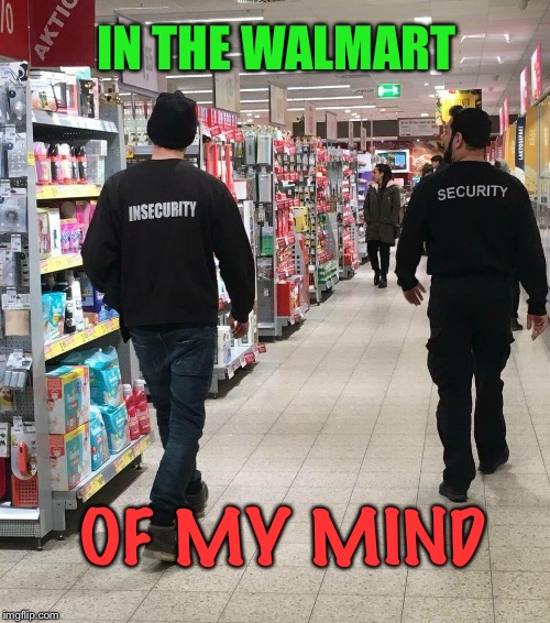 Stealing merchandise and looking for shoplifters  | IN THE WALMART OF MY MIND | image tagged in security,walmart,mind,shoplifting,funny memes | made w/ Imgflip meme maker