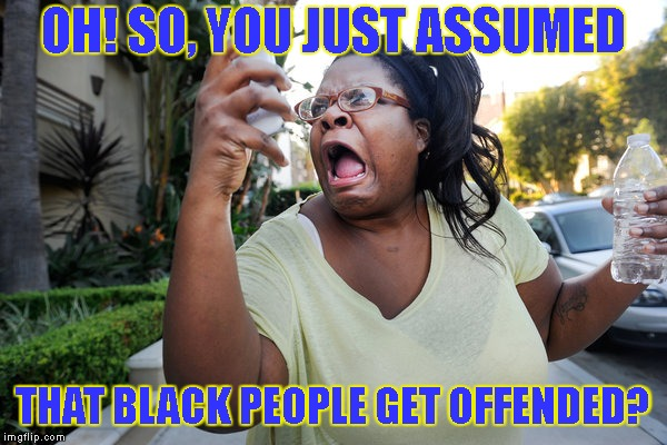Oh, No You Didn't Woman On Cell Phone | OH! SO, YOU JUST ASSUMED THAT BLACK PEOPLE GET OFFENDED? | image tagged in oh,no you didn't woman on cell phone | made w/ Imgflip meme maker