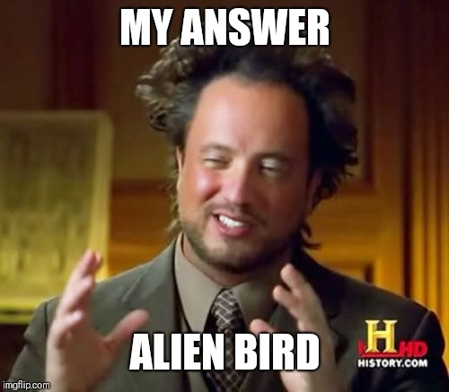 Ancient Aliens Meme | MY ANSWER ALIEN BIRD | image tagged in memes,ancient aliens | made w/ Imgflip meme maker