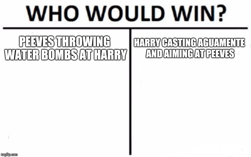 Who Would Win? Meme | PEEVES THROWING WATER BOMBS AT HARRY HARRY CASTING AGUAMENTE AND AIMING AT PEEVES | image tagged in memes,who would win | made w/ Imgflip meme maker
