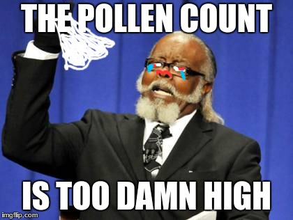 Ah spring... what a lovely time of year | THE POLLEN COUNT IS TOO DAMN HIGH | image tagged in memes,too damn high,allergies,spring | made w/ Imgflip meme maker