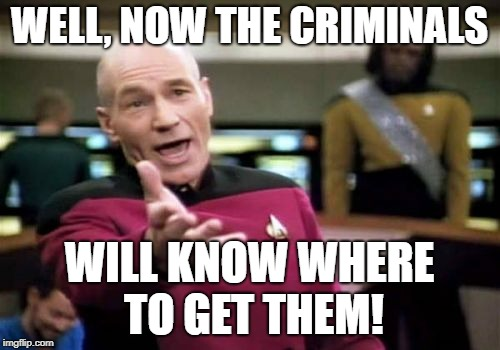 Picard Wtf Meme | WELL, NOW THE CRIMINALS WILL KNOW WHERE TO GET THEM! | image tagged in memes,picard wtf | made w/ Imgflip meme maker