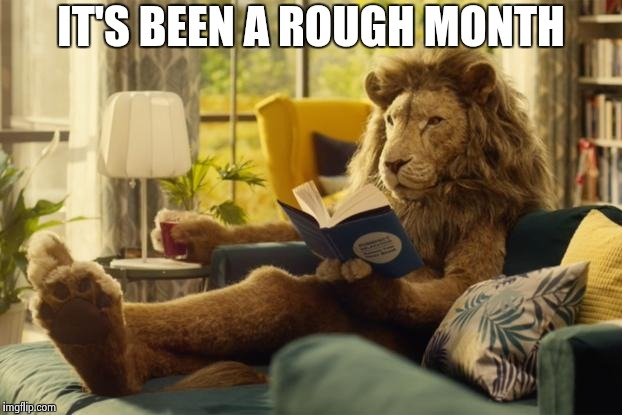 Lion relaxing | IT'S BEEN A ROUGH MONTH | image tagged in lion relaxing | made w/ Imgflip meme maker