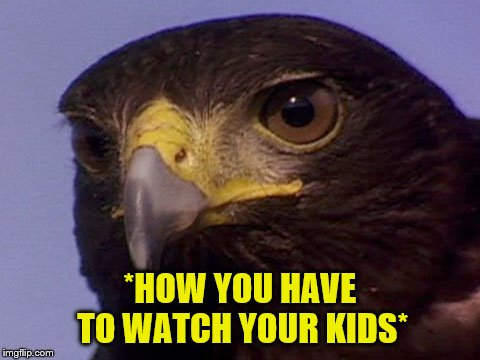 *HOW YOU HAVE TO WATCH YOUR KIDS* | made w/ Imgflip meme maker