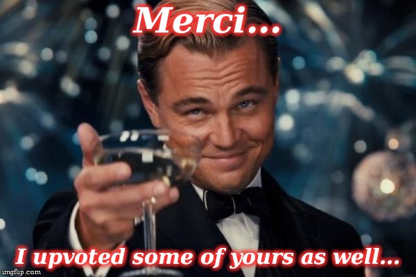 Leonardo Dicaprio Cheers Meme | Merci... I upvoted some of yours as well... | image tagged in memes,leonardo dicaprio cheers | made w/ Imgflip meme maker