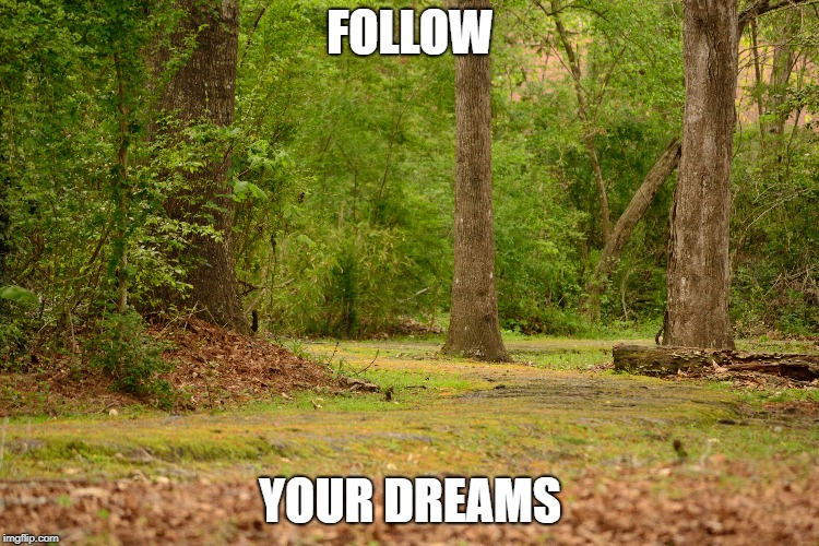 Follow Your Dreams | FOLLOW YOUR DREAMS | image tagged in path,dreams | made w/ Imgflip meme maker