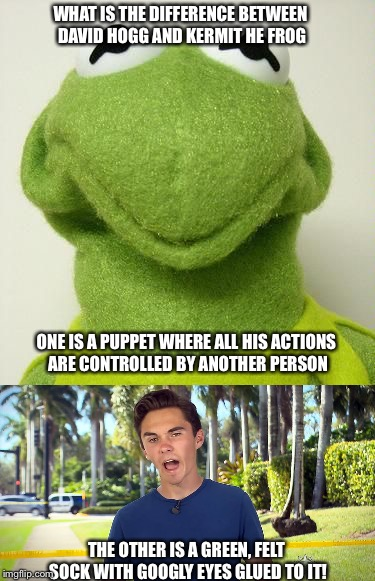 At least one of these two will admit to being a puppet... | ONE IS A PUPPET WHERE ALL HIS ACTIONS ARE CONTROLLED BY ANOTHER PERSON THE OTHER IS A GREEN, FELT SOCK WITH GOOGLY EYES GLUED TO IT! WHAT IS | image tagged in david hogg,kermit the frog,meme,puppet,muppets | made w/ Imgflip meme maker