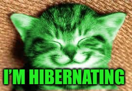 happy RayCat | I'M HIBERNATING | image tagged in happy raycat | made w/ Imgflip meme maker