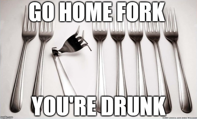 Unique | GO HOME FORK YOU'RE DRUNK | image tagged in unique,fork,memes | made w/ Imgflip meme maker