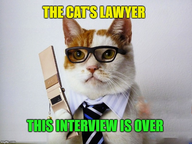 THIS INTERVIEW IS OVER THE CAT'S LAWYER | made w/ Imgflip meme maker