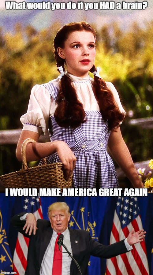 Sadly, it was all a dream | What would you do if you HAD a brain? I WOULD MAKE AMERICA GREAT AGAIN | image tagged in memes | made w/ Imgflip meme maker