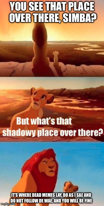 Simba Shadowy Place | YOU SEE THAT PLACE OVER THERE, SIMBA? IT'S WHERE DEAD MEMES LAY, DO AS I SAE AND DO NOT FOLLOW DE WAE, AND YOU WILL BE FINE | image tagged in memes,simba shadowy place | made w/ Imgflip meme maker