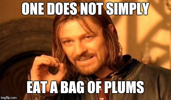 One Does Not Simply Meme | ONE DOES NOT SIMPLY EAT A BAG OF PLUMS | image tagged in memes,one does not simply | made w/ Imgflip meme maker