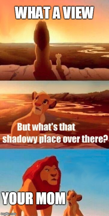 Simba Shadowy Place Meme | WHAT A VIEW YOUR MOM | image tagged in memes,simba shadowy place | made w/ Imgflip meme maker