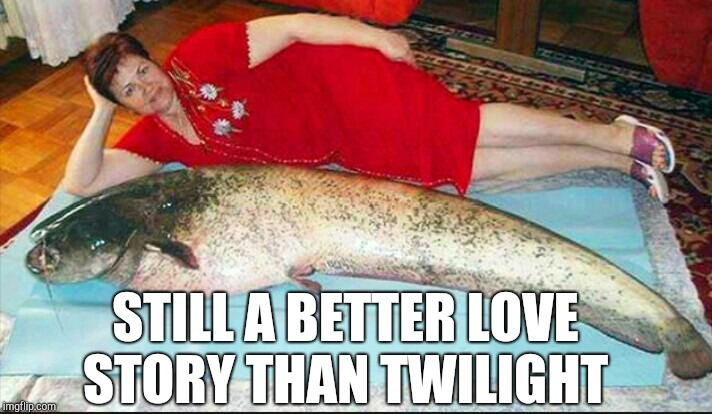 She got herself quite a catch there  | STILL A BETTER LOVE STORY THAN TWILIGHT | image tagged in still a better love story than twilight,jbmemegeek,twilight,catfish,big fish | made w/ Imgflip meme maker