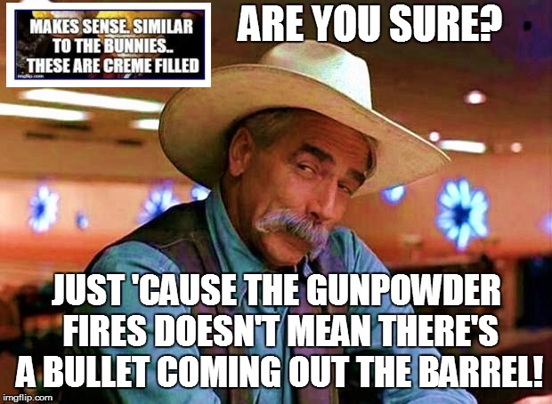ARE YOU SURE? JUST 'CAUSE THE GUNPOWDER FIRES DOESN'T MEAN THERE'S A BULLET COMING OUT THE BARREL! | made w/ Imgflip meme maker