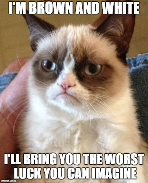 Grumpy Cat Meme | I'M BROWN AND WHITE I'LL BRING YOU THE WORST LUCK YOU CAN IMAGINE | image tagged in memes,grumpy cat | made w/ Imgflip meme maker