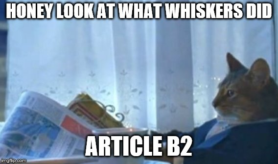 HONEY LOOK AT WHAT WHISKERS DID ARTICLE B2 | made w/ Imgflip meme maker