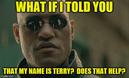 Matrix Morpheus Meme | WHAT IF I TOLD YOU THAT MY NAME IS TERRY?  DOES THAT HELP? | image tagged in memes,matrix morpheus | made w/ Imgflip meme maker