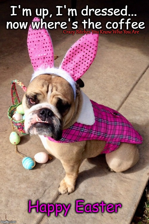 I'm up, I'm dressed... now where's the coffee Crazy B**ches You Know Who You Are Happy Easter | image tagged in easter,coffee,dog | made w/ Imgflip meme maker