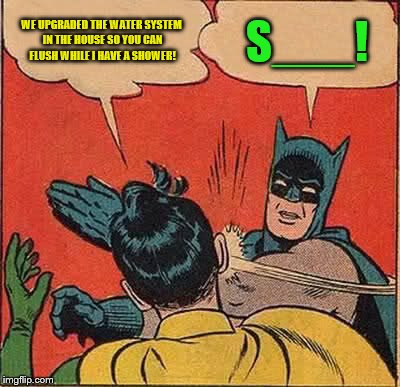 Batman Slapping Robin Meme | WE UPGRADED THE WATER SYSTEM IN THE HOUSE SO YOU CAN FLUSH WHILE I HAVE A SHOWER! S___! | image tagged in memes,batman slapping robin | made w/ Imgflip meme maker