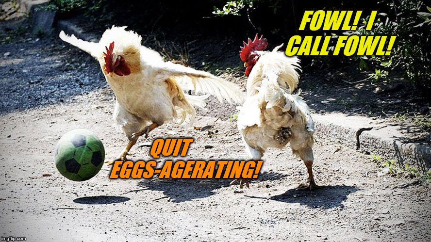 Chicken Week, April 2-8, a JBmemegeek & giveuahint event! | FOWL!  I CALL FOWL! QUIT        EGGS-AGERATING! | image tagged in memes,chicken week,jbmemegeek,giveuahint,theme week stream | made w/ Imgflip meme maker