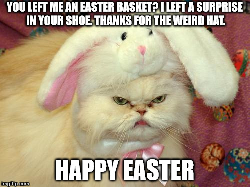 easter cat | YOU LEFT ME AN EASTER BASKET? I LEFT A SURPRISE IN YOUR SHOE. THANKS FOR THE WEIRD HAT. HAPPY EASTER | image tagged in easter cat | made w/ Imgflip meme maker