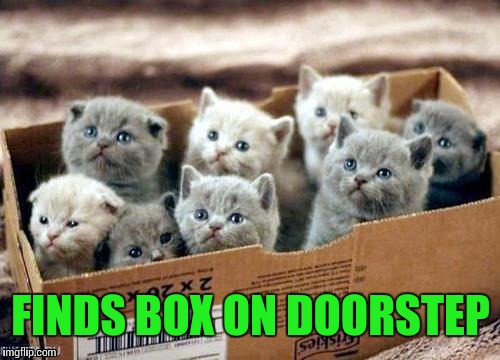 FINDS BOX ON DOORSTEP | made w/ Imgflip meme maker