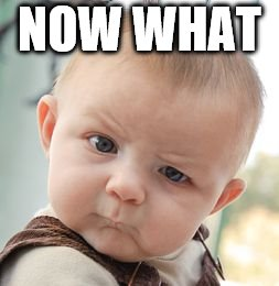 Skeptical Baby Meme | NOW WHAT | image tagged in memes,skeptical baby | made w/ Imgflip meme maker