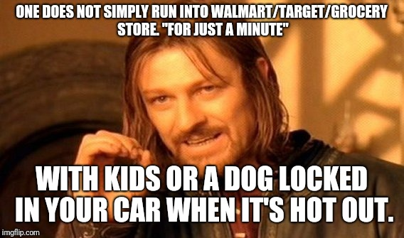 "One Does Not Simply Meme | ONE DOES NOT SIMPLY RUN INTO WALMART/TARGET/GROCERY STORE. ""FOR JUST A MINUTE"" WITH KIDS OR A DOG LOCKED IN YOUR CAR WHEN IT'S HOT OUT. 