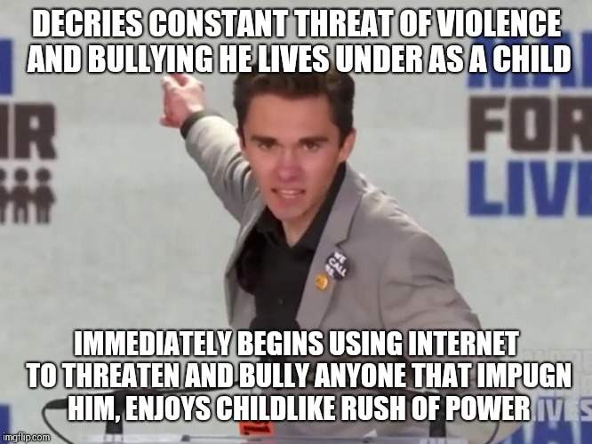 Kids say the darndest things | DECRIES CONSTANT THREAT OF VIOLENCE AND BULLYING HE LIVES UNDER AS A CHILD IMMEDIATELY BEGINS USING INTERNET TO THREATEN AND BULLY ANYONE TH | image tagged in david hogg,first world problems,memes,pot calling kettle black,because i cry so,fox news | made w/ Imgflip meme maker