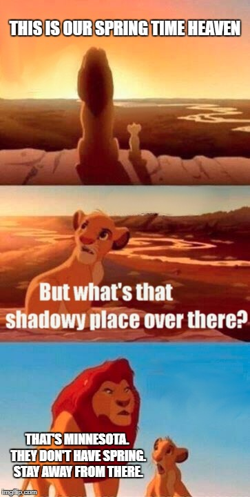 A Spring Wonderland | THIS IS OUR SPRING TIME HEAVEN THAT'S MINNESOTA. THEY DON'T HAVE SPRING. STAY AWAY FROM THERE. | image tagged in memes,simba shadowy place,winter,minnesota,spring break,cold weather | made w/ Imgflip meme maker