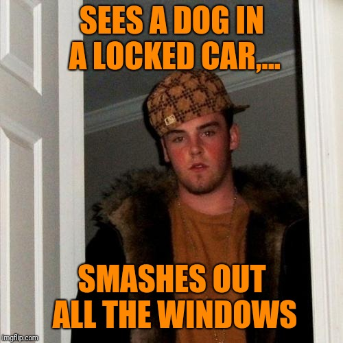 SEES A DOG IN A LOCKED CAR,... SMASHES OUT ALL THE WINDOWS | made w/ Imgflip meme maker