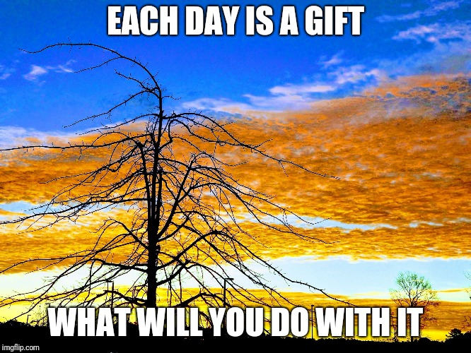 EACH DAY IS A GIFT WHAT WILL YOU DO WITH IT | image tagged in beautiful morning | made w/ Imgflip meme maker