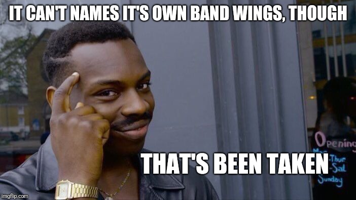 Roll Safe Think About It Meme | IT CAN'T NAMES IT'S OWN BAND WINGS, THOUGH THAT'S BEEN TAKEN | image tagged in memes,roll safe think about it | made w/ Imgflip meme maker
