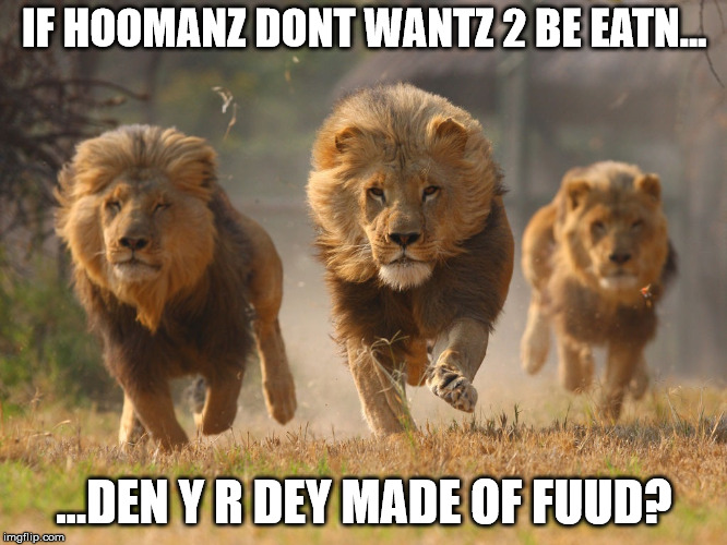 Checkmate, hooman. | IF HOOMANZ DONT WANTZ 2 BE EATN... ...DEN Y R DEY MADE OF FUUD? | image tagged in vegan,food,flesh,meat | made w/ Imgflip meme maker