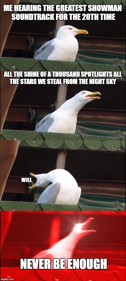Inhaling Seagull Meme | ME HEARING THE GREATEST SHOWMAN SOUNDTRACK FOR THE 20TH TIME ALL THE SHINE OF A THOUSAND SPOTLIGHTS ALL THE STARS WE STEAL FROM THE NIGHT SK | image tagged in memes,inhaling seagull | made w/ Imgflip meme maker