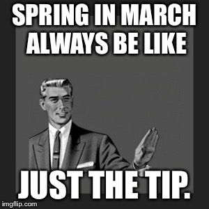 Kill Yourself Guy Meme | SPRING IN MARCH ALWAYS BE LIKE JUST THE TIP. | image tagged in memes,kill yourself guy | made w/ Imgflip meme maker
